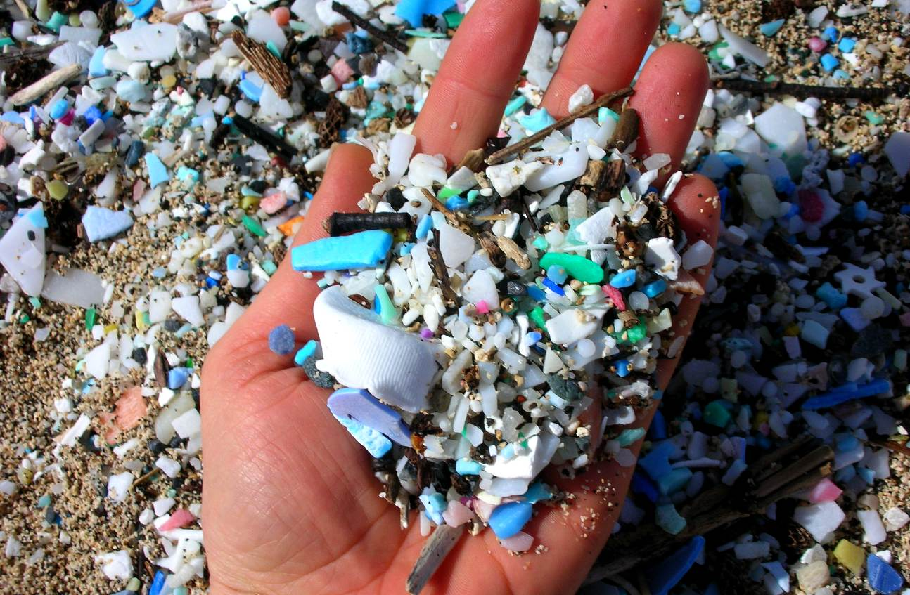 Micro and macro plastics on beaches