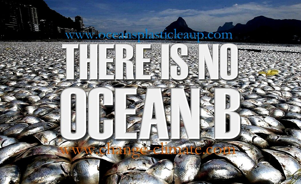 OCEAN B, THERE IS NO