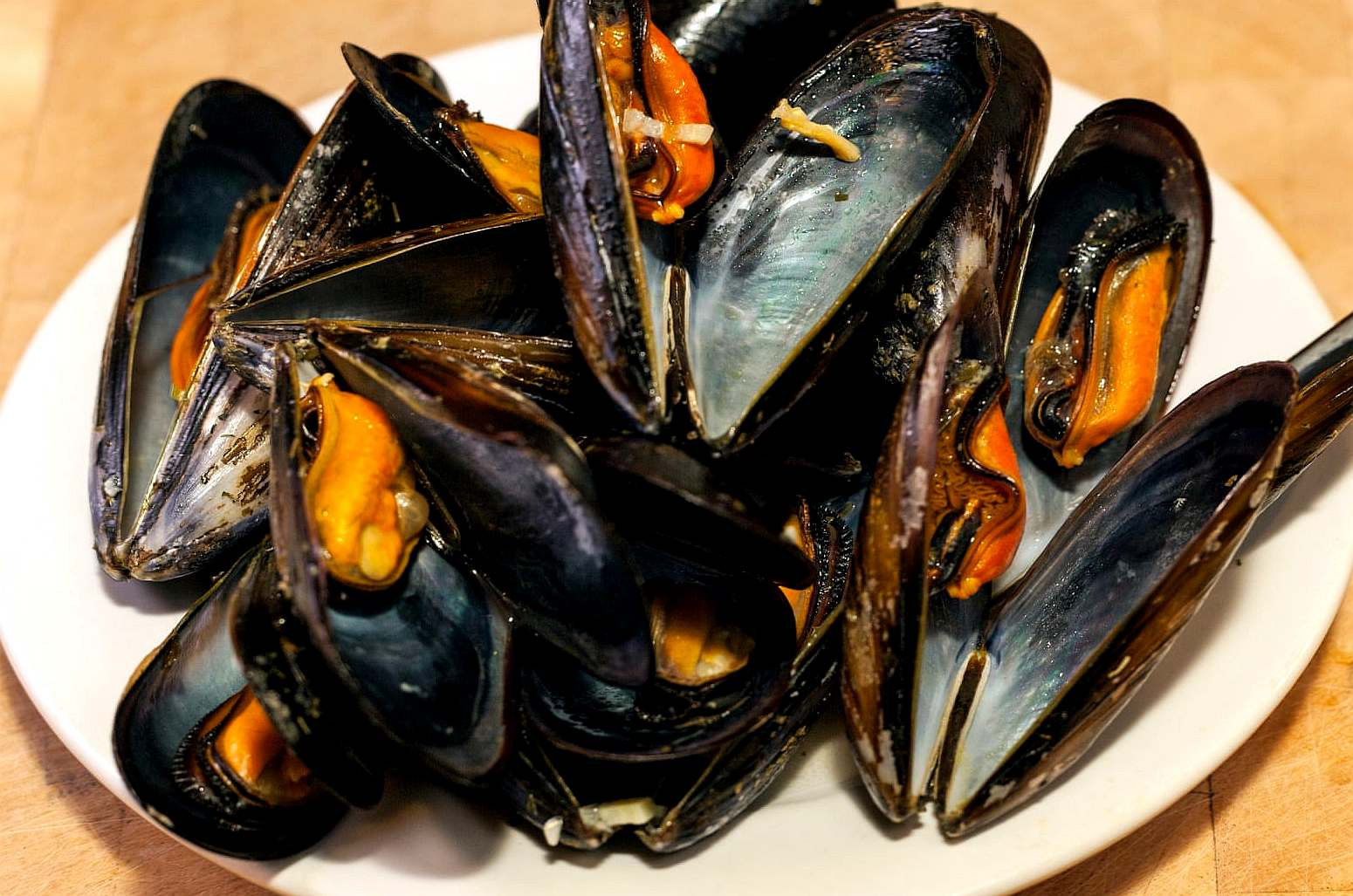 Shellfish, mussels laden with plastic microfibers